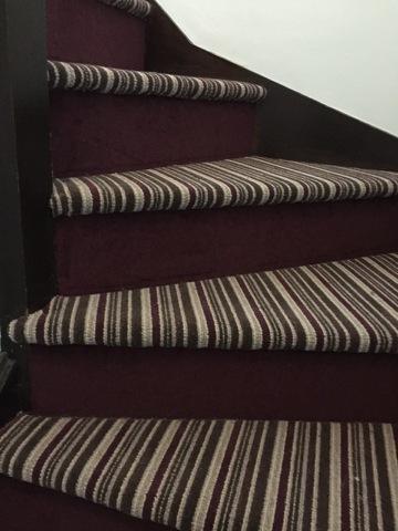 stripe_steps_with_plain_riser_1