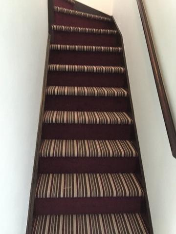 stripe_steps_with_plain_riser_3