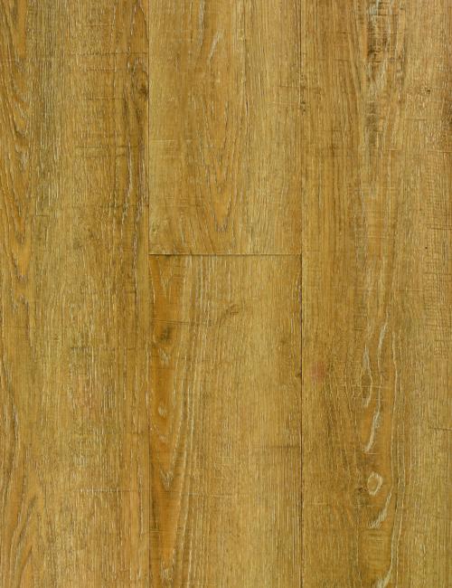 Acadian Oak