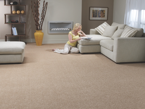 Supreme stainsafe 19 pocklington carpets - Carpets for living room online india ...